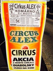 CIRCUS ALEX