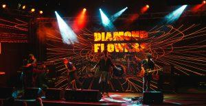 Diamon Flowers – koncert