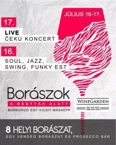 WINE GARDEN / Live Čeku koncert / SOUL, JAZZ, SWING, FUNKY